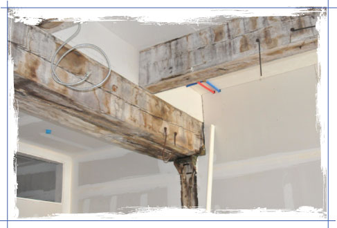 Exposed Beams 2